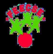 logo_feecse